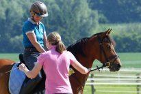 PferdeTheraTraining