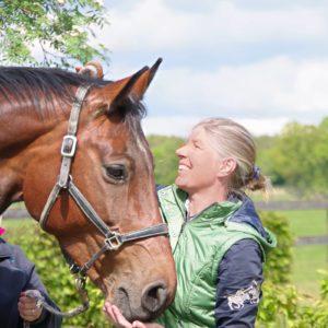 Pferdeverhalten und Bedürfnisse des Pferdes besser verstehen