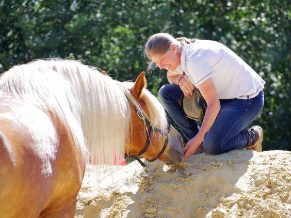 REITGEIST stärkt Pferd und Reiter natürlich ganzheitlich
