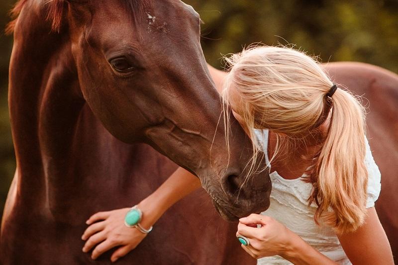 Bodenarbeit & Horsemanship