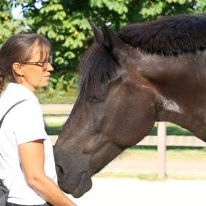 Intensivkurs für achtsame Pferde-Menschen