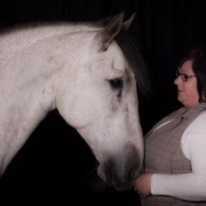 Angstfrei Reiten - Mentaltraining für Reiter